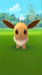 Il sera possible d'attraper les Pokémon sans utiliser la réalité augmentée