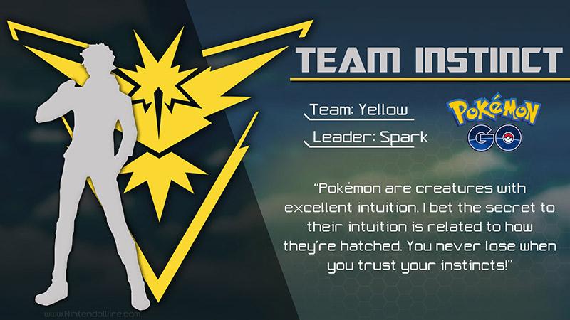 L'équipe Intuition