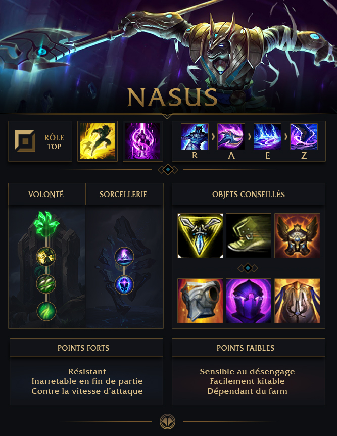 List Of Synonyms And Antonyms Of The Word Nasus Top