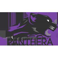 Panthera SMITE team