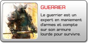Guerrier dans Guild Wars 2