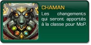 Mists of Pandaria : Chaman
