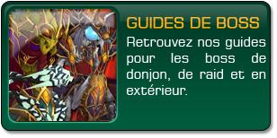 Guides de boss
