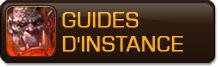 Guides d'instances