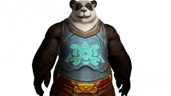 Apparence  du Tabard de la résistance de Mécarouille - World of Warcraft