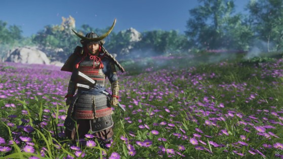 Soluce Ghost of Tsushima : Fleurs, teintures & cosmétiques