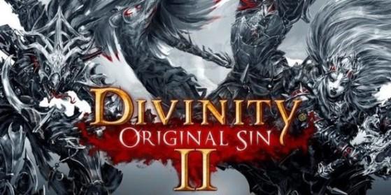 Test Divinity: Original Sin 2, PC