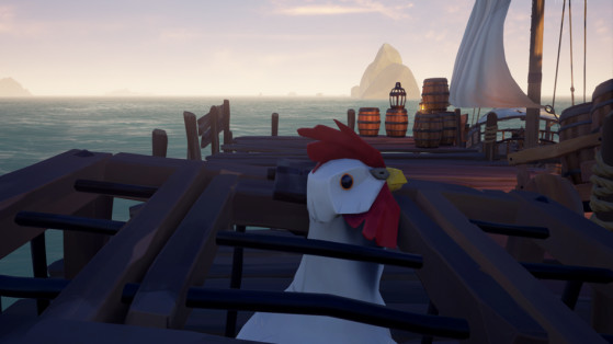 Une pauvre poule en cage - Sea of thieves