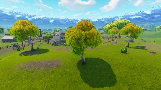 Une variante de l'arbre à pomme que l'on trouve au nord de la carte, avec un tronc clair et des feuilles jaunes. Fait également apparaître des pommes. - Fortnite : Battle royale