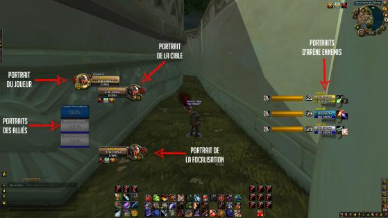 Mon interface (les portraits d'arène étant des tests car je n'étais pas en arène, en réalité il n'y a pas autant de barres) - World of Warcraft