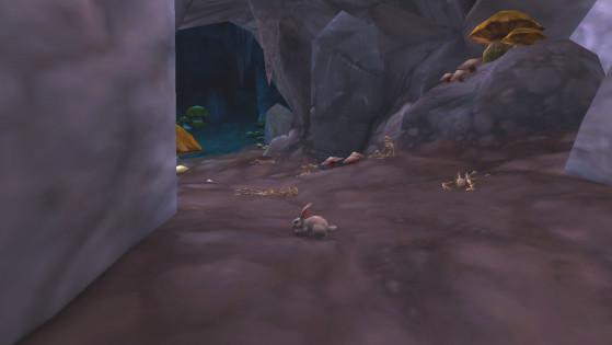 Le Lapin de Sombrelune est une petite boule de poils non hostile, il est donc très facile de le rater si vous n'avez pas l'habitude ! - World of Warcraft