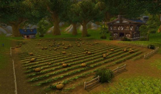 Hurlevent, c'est aussi le champ de potirons de la Ferme des Wollerton parce que... je ne sais pas. J'imagine que les Wollerton sont des hipsters qui font pousser des légumes bio qu'ils refourguent ensuite pour une fortune à la salle des ventes... - World of Warcraft