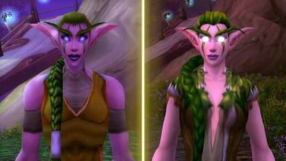 Les Elfes de la nuit de Classic vs ceux de BFA. Le mythe est brisé - WoW : Classic