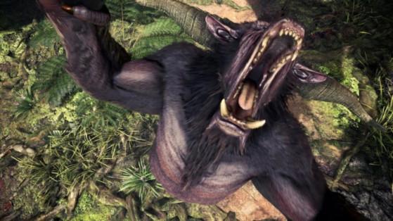 MHW Iceborne : Patch updade 11.01 sur PS4 & 11.0.0.1 sur Xbox One