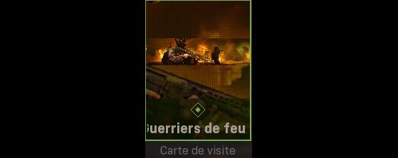 500 EXP + Carte de visite - Call of Duty : Modern Warfare