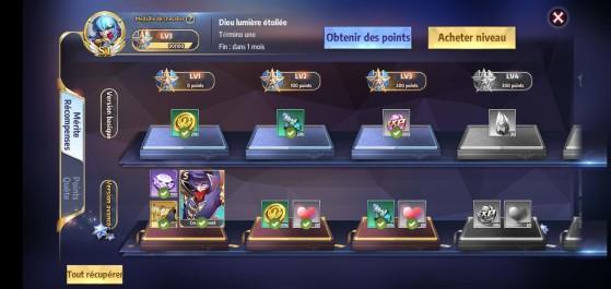 Médailles de chevaliers - Millenium