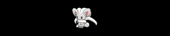 Pashmilla - Pokemon GO