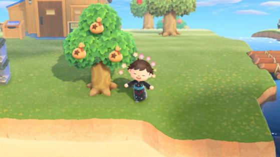 Animal Crossing New Horizons : comment faire un arbre à clochettes ?