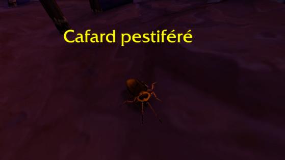 Un Cafard pestiféré à Orgrimmar - World of Warcraft