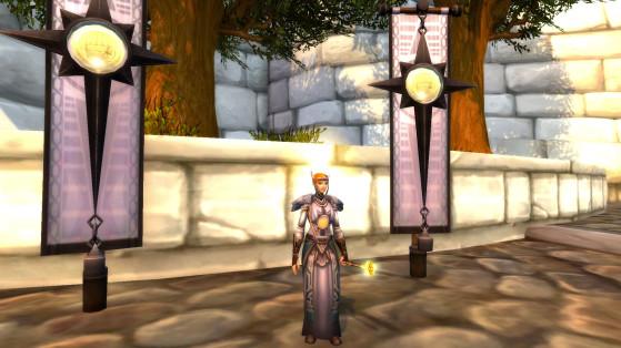Une Soigneuse d'Argent de l'Alliance - World of Warcraft