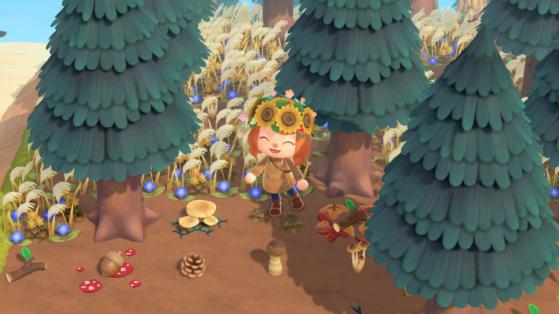 Champignons et liste des meubles Champi dans Animal Crossing New Horizons