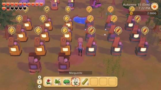 Story of Seasons : Pioneers of Olive Town