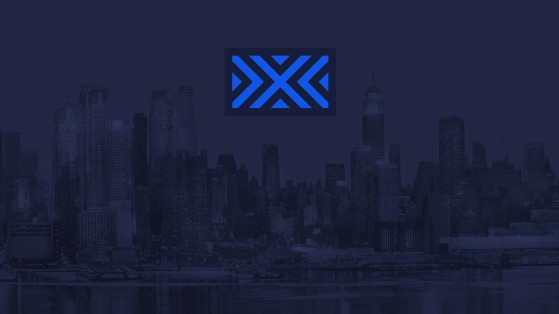 Overwatch League New York Excelsior NYXL : composition, roster, logo