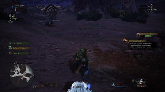 Lieu de la capture et description - Monster Hunter World