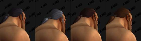 Les différentes couleurs de cheveux disponibles - World of Warcraft
