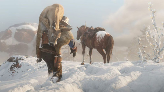 Guide Red Dead Redemption 2 : Chasse, animaux