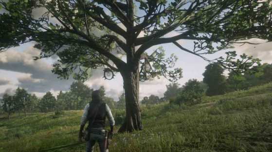 Guide Red Dead Redemption 2 : Attrape-rêves, dreamcatcher
