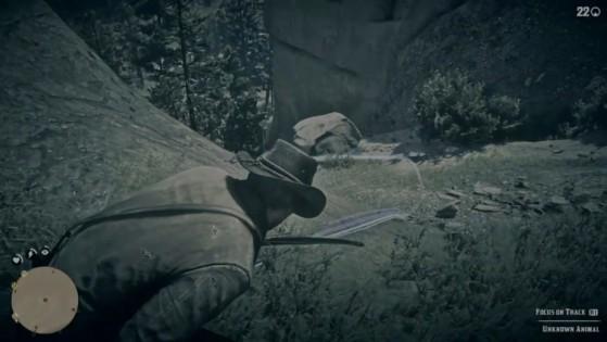 Les parties de chasse entre potes seront bientôt une réalité. - Red Dead Redemption 2