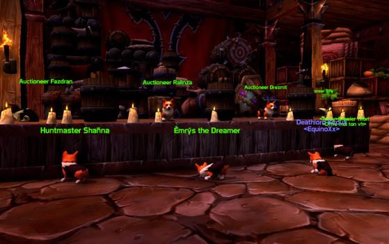 Les Lunettes corgi suroptimisées transforment tout le monde en Corgi - World of Warcraft