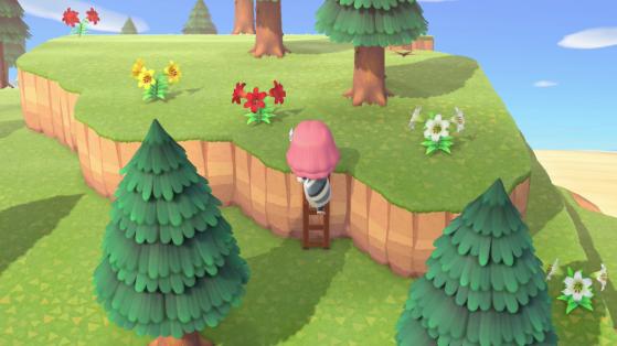 Animal Crossing New Horizons : Obtenir l'échelle pour accéder aux étages de l'île
