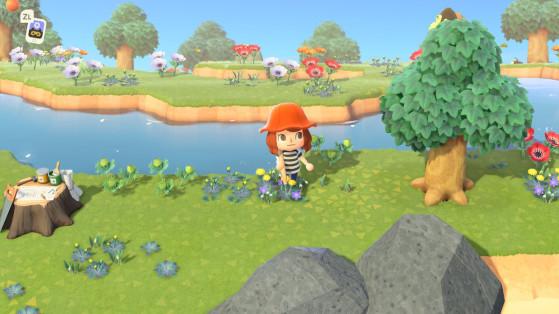 Animal Crossing New Horizons : tout savoir sur les îles mystères