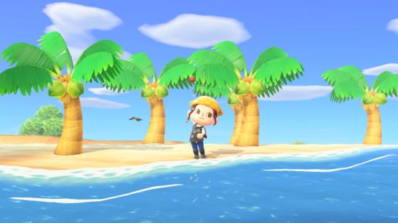 Animal Crossing New Horizons : la liste des poissons du mois d'avril hémisphère nord et sud