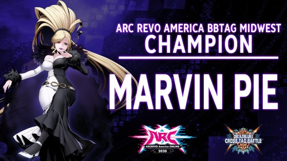 Le grand gagnant du tournoi - VS Fighting