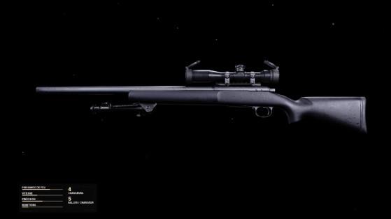 Quelle est la meilleure classe pour le Pelington 703 sur Black Ops Cold War ?