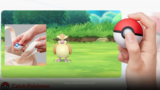 Test Pokéball Plus dans Let's GO Pikachu Evoli, Nintendo Switch