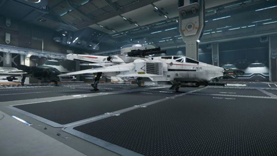 Star Citizen : Fonction