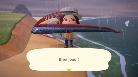 Animal Crossing New Horizons : les poissons les plus rares et chers du jeu !