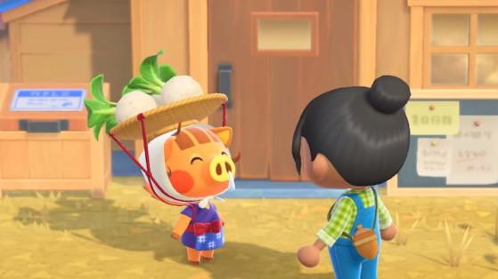 Animal Crossing New Horizons : Calculer son cours du navet