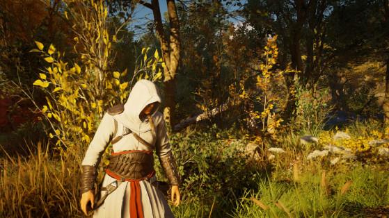 AC Valhalla : comment récupérer la tenue d'Altaïr ?