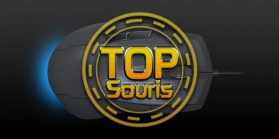 Souris Gaming : le top [M] - 30 août 2013