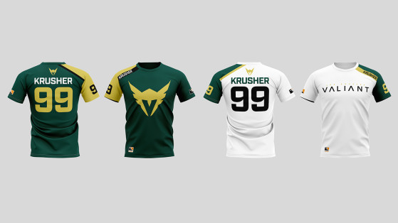 Maillots 2018-2019 - Overwatch