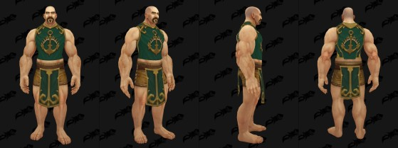 Tabard des Portvaillant - World of Warcraft