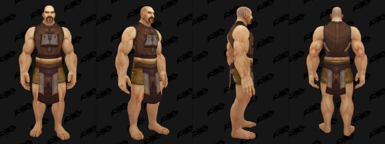 Tabard de l'ordre des braises - World of Warcraft
