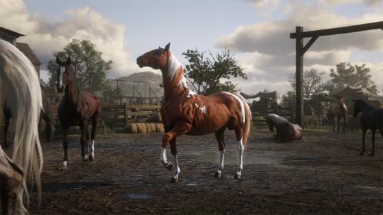 Guide Red Dead Redemption 2 : Chevaux, montures