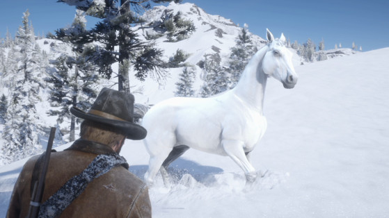 Guide Red Dead Redemption 2 : Meilleur cheval, domptage, pur-sang arabe