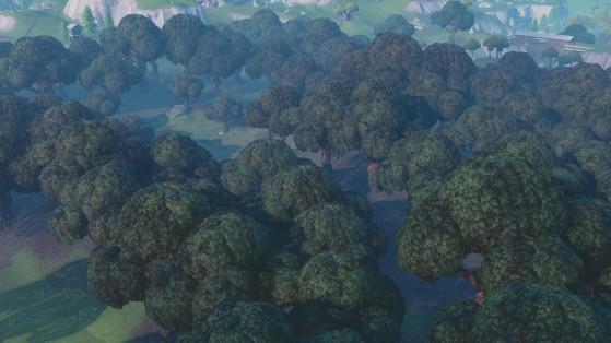 Fortnite : Wailing Woods change de couleur